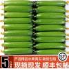 黄瓜新鲜小黄瓜水果小青瓜荷兰蔬菜农家10山东旱生吃5斤顺丰包邮
