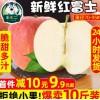 红富士苹果水果新鲜当季整箱陕西红苹果应季冰糖心苹果丑苹果10斤
